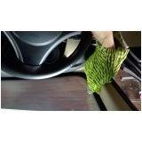 Higienização de carro valores na Chora Menino